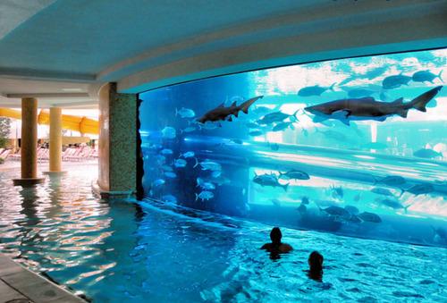 Pool On Pinterest Pools Swimming Pools And Pool Rafts
